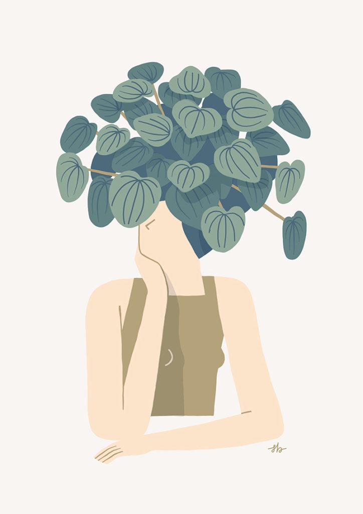 Illustrazione Cappellino di Peperomia per Casa Facile © Silvia Bettini